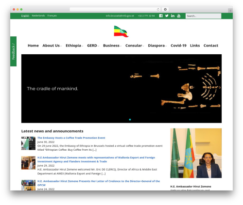 Free WordPress Magic Post Listing plugin - ethiopianembassy.be