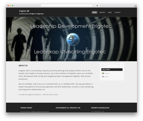 Free WordPress Polylang plugin - erigotec.com