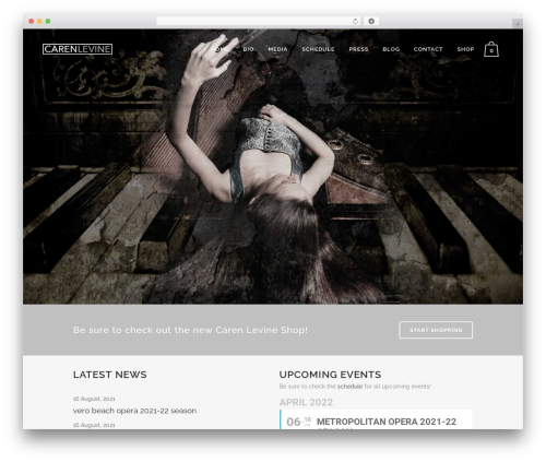Bridge template WordPress - carenlevine.com