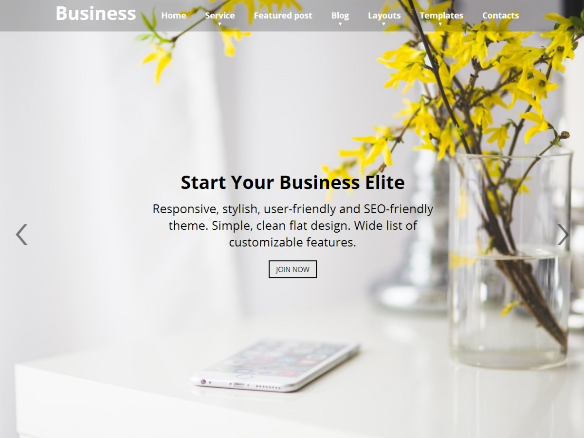 Business Elite photography WordPress theme
