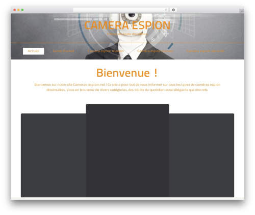 ThemeAlley.Business premium WordPress theme - cameras-espion.net