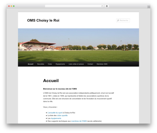 Twenty Eleven free WordPress theme - omschoisy.com