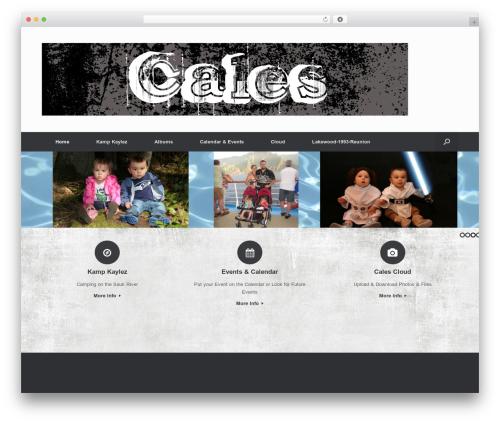 Vantage Premium theme WordPress - calesclan.com