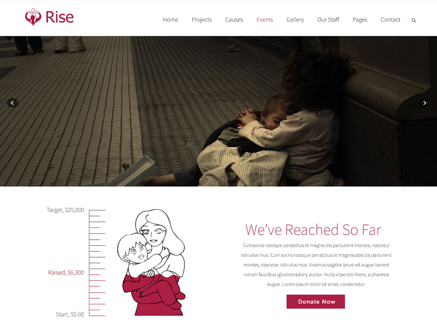 CCADM Responsive theme - Rise Child WordPress theme