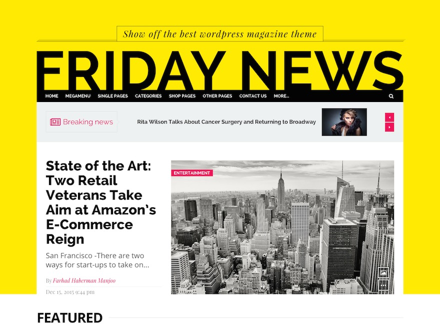 Friday News WordPress theme image