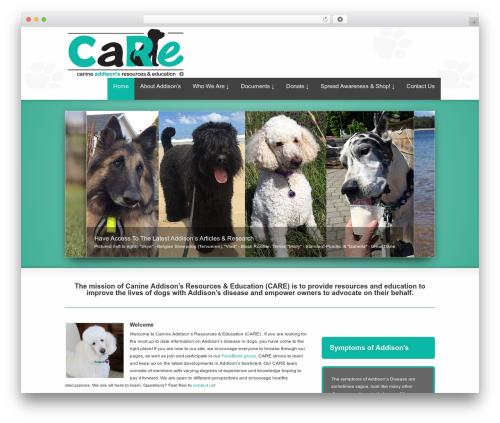 Best WordPress template Striking MultiFlex & Ecommerce Responsive WordPress Theme - canineaddisons.org