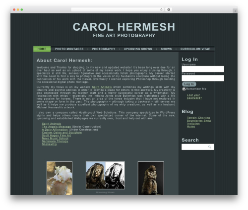 Free WordPress Gallery Carousel Without JetPack plugin - carolhermesh.com