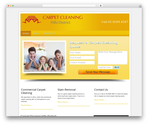 WP theme Local Business Pro Responsive Theme - carpetcleaninghillsdistrict.com
