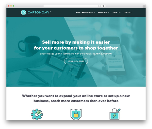 Theme WordPress Divi - cartonomy.com