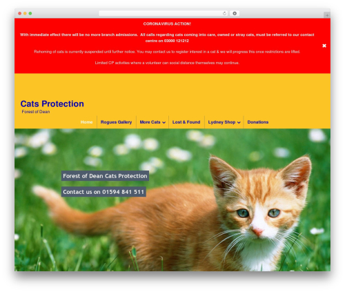 WordPress theme DynamiX - cats-forestofdean.co.uk