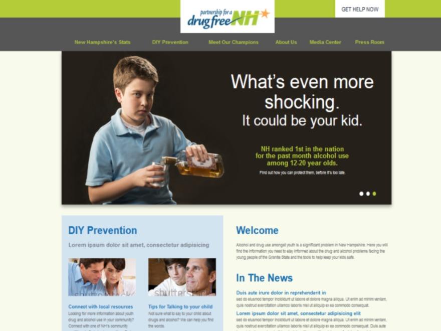 Drugfree best WordPress theme