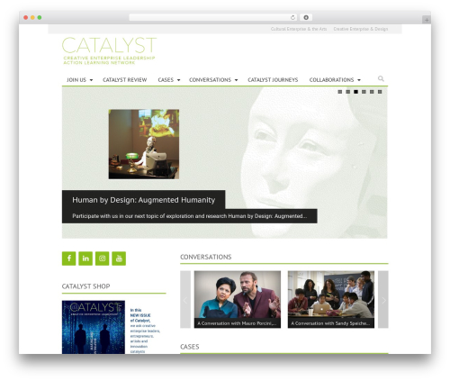 WordPress theme Ciola - catalystreview.net