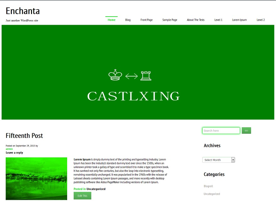 castlxing free WordPress theme