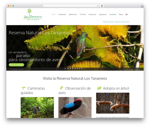 Free WordPress MailChimp for WordPress plugin - tananeos.org/es