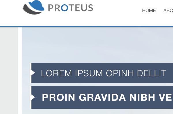 Proteus best WordPress theme