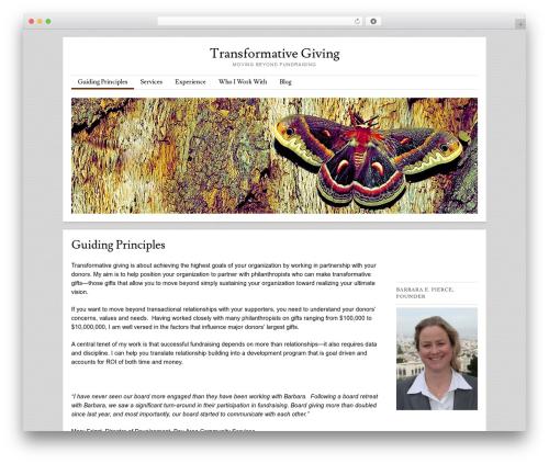 Skirmish WP theme - transformativegiving.com