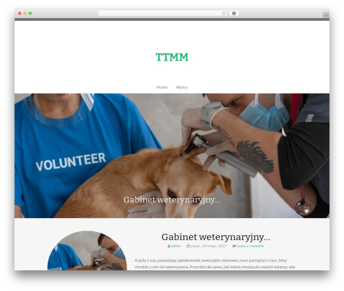 WordPress related-posts plugin - ttmm.pl