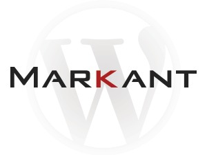 WordPress theme Markant