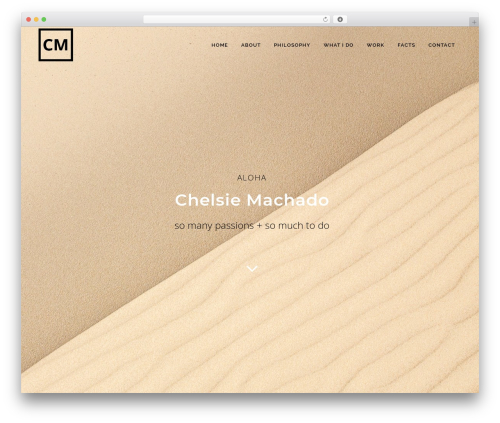 Bridge theme WordPress - chelsiemachado.com