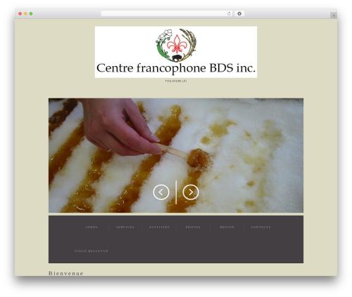 cherry premium WordPress theme - cfbds.ca