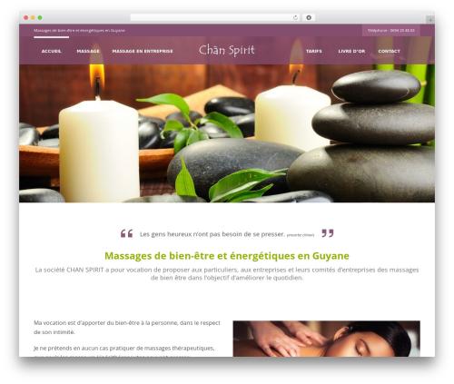 WordPress dmsguestbook plugin - chan-spirit.com