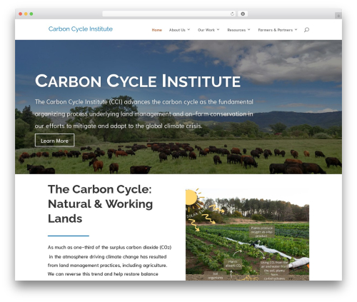 Divi theme WordPress - carboncycle.org