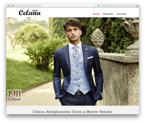 Striking MultiFlex & Ecommerce Responsive WordPress Theme WP template - celana1937.it
