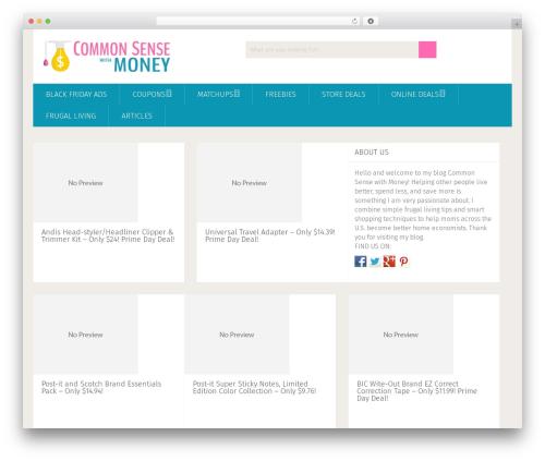 CSWM-Winter best WordPress theme - commonsensewithmoney.com