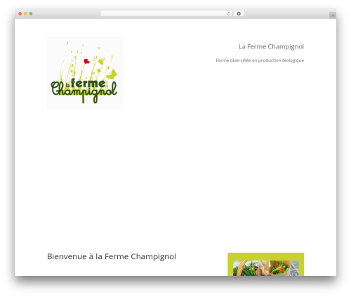 Divi WordPress theme - champignol.be
