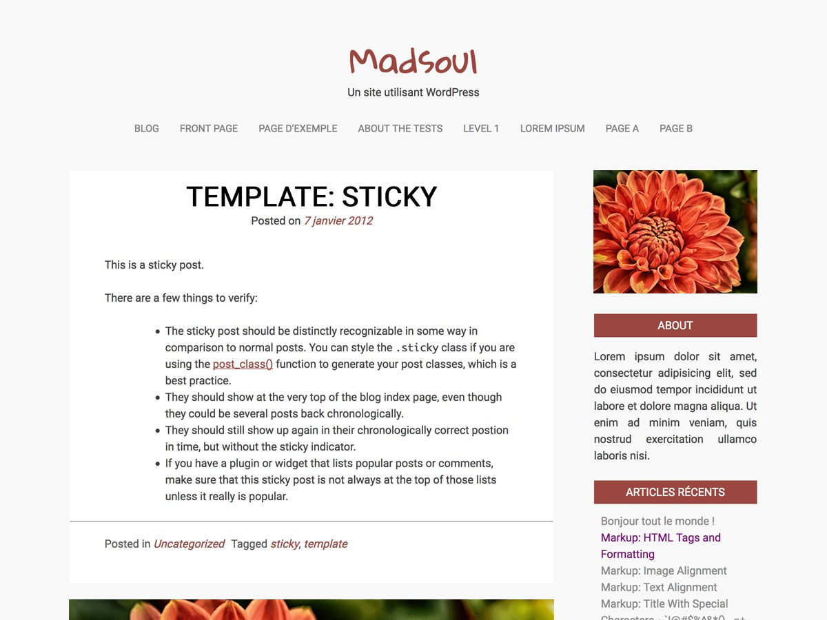 Madsoul WordPress blog template
