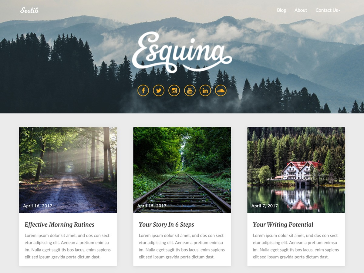 Seolib WordPress blog template