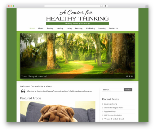 Striking MultiFlex & Ecommerce Responsive WordPress Theme WordPress news template - centerforhealthythinking.com