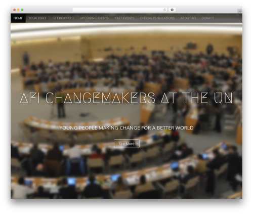 Arcade Basic WP theme - changemakers-un.org
