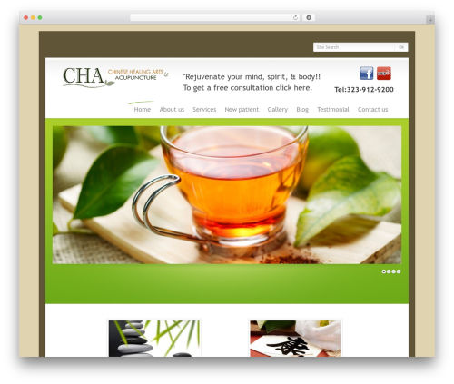 Theme WordPress WordPress Theme Number - chaacupuncture.com