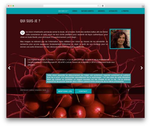 WordPress wpcopyprotectionsu plugin - caroledemerin.com
