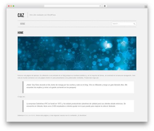 WordPress website template Hannari - caz.mx