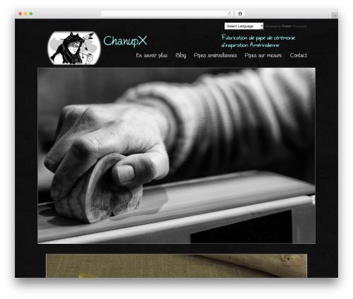 Best WordPress theme Striking MultiFlex & Ecommerce Responsive WordPress Theme - chanupx.fr