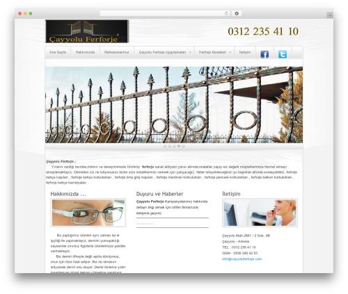 Complexity WordPress theme - cayyoluferforje.com