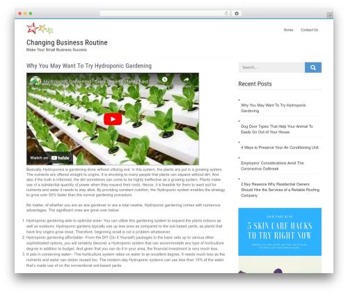 Businessweb Plus free WordPress theme - changingattitudeireland.org
