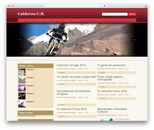 WordPress theme Oracle - calderoncb.com