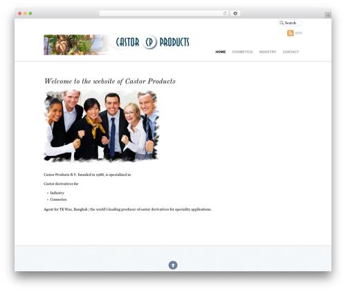 Best WordPress template Agency - castorproducts.nl