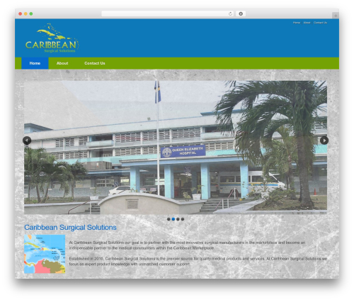 Impacto theme WordPress - caribbeansurgicalsolutions.com