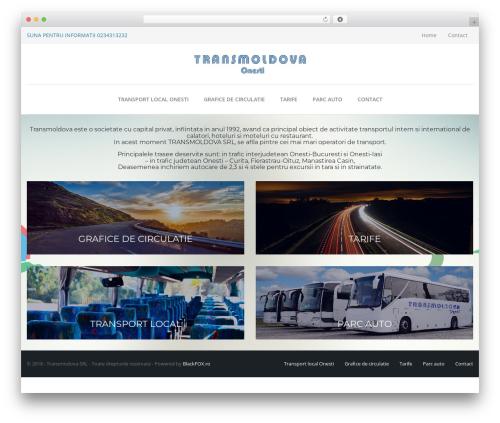 TheBuilt WordPress theme - transmoldova.ro