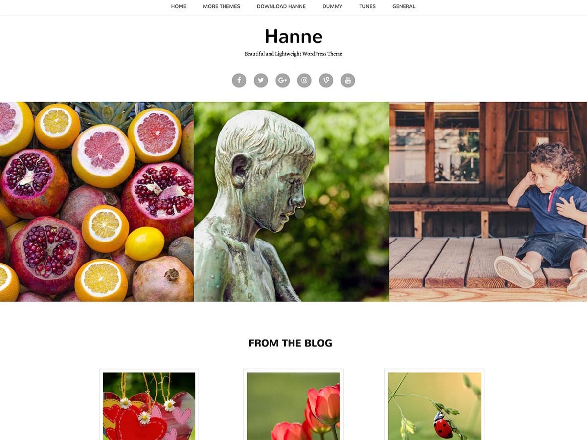 Hanne theme WordPress free