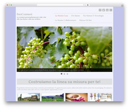 Irex Lite WordPress theme download - frescosmesi.com