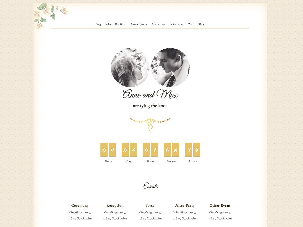 Newlyweds free WP theme