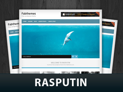 Rasputin best WordPress template