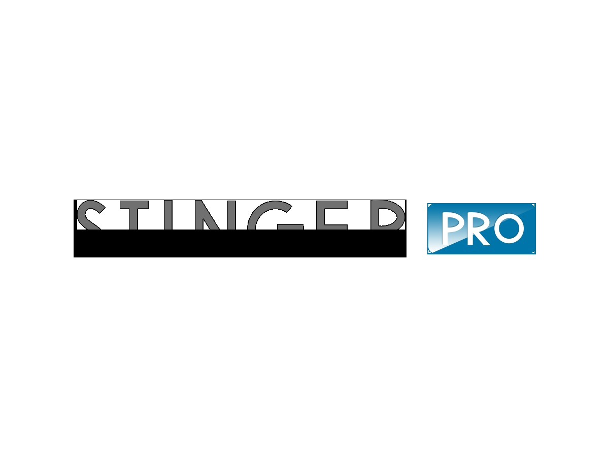STINGER PRO WordPress theme