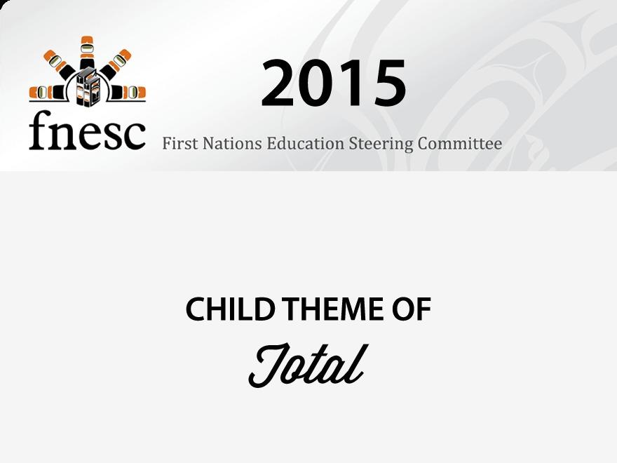 Theme WordPress FNESC 2015
