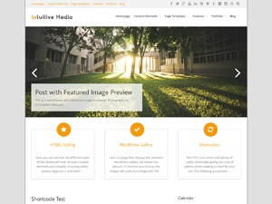 WordPress template Intuition Child